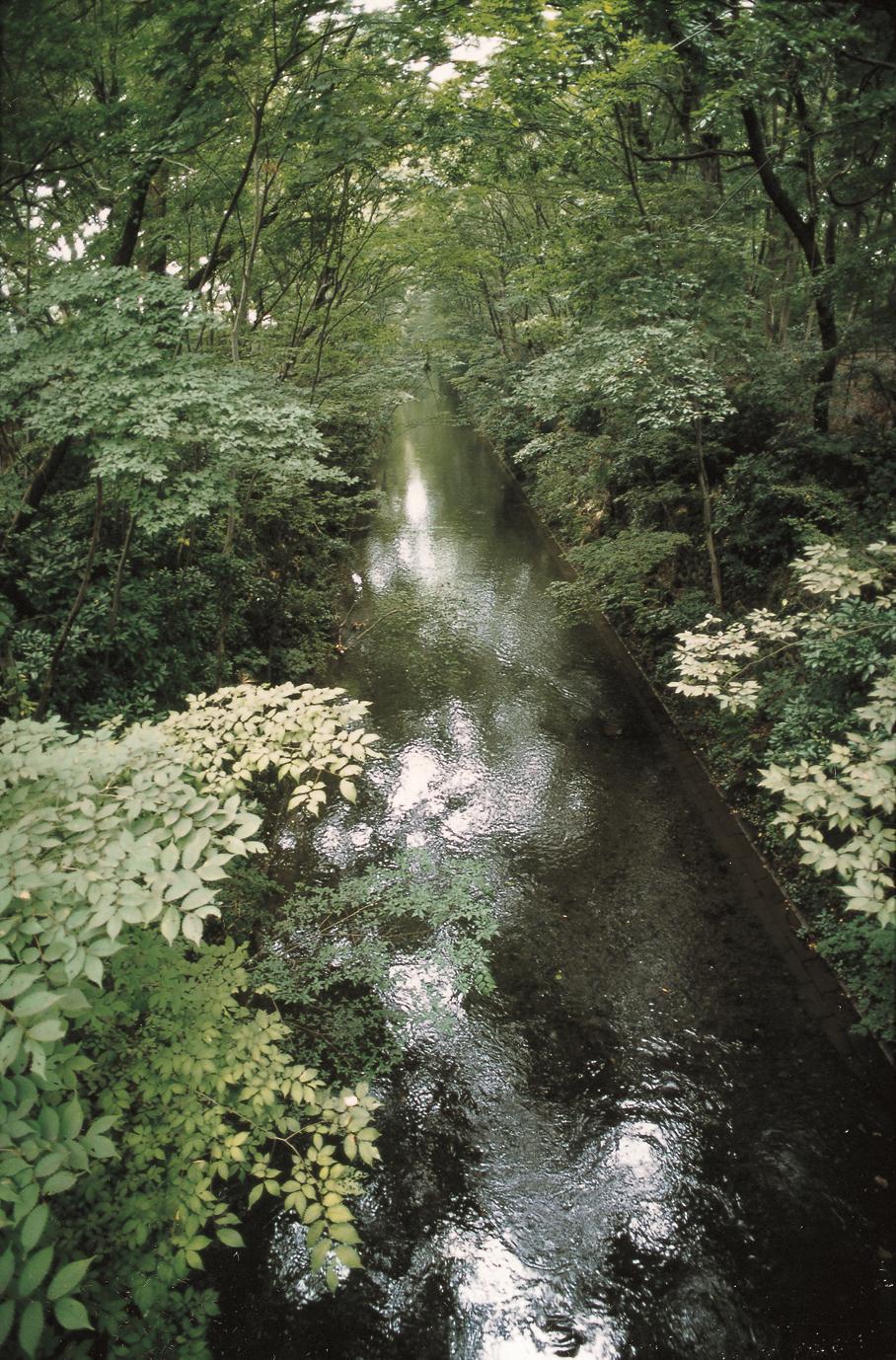 国指定史跡 玉川上水